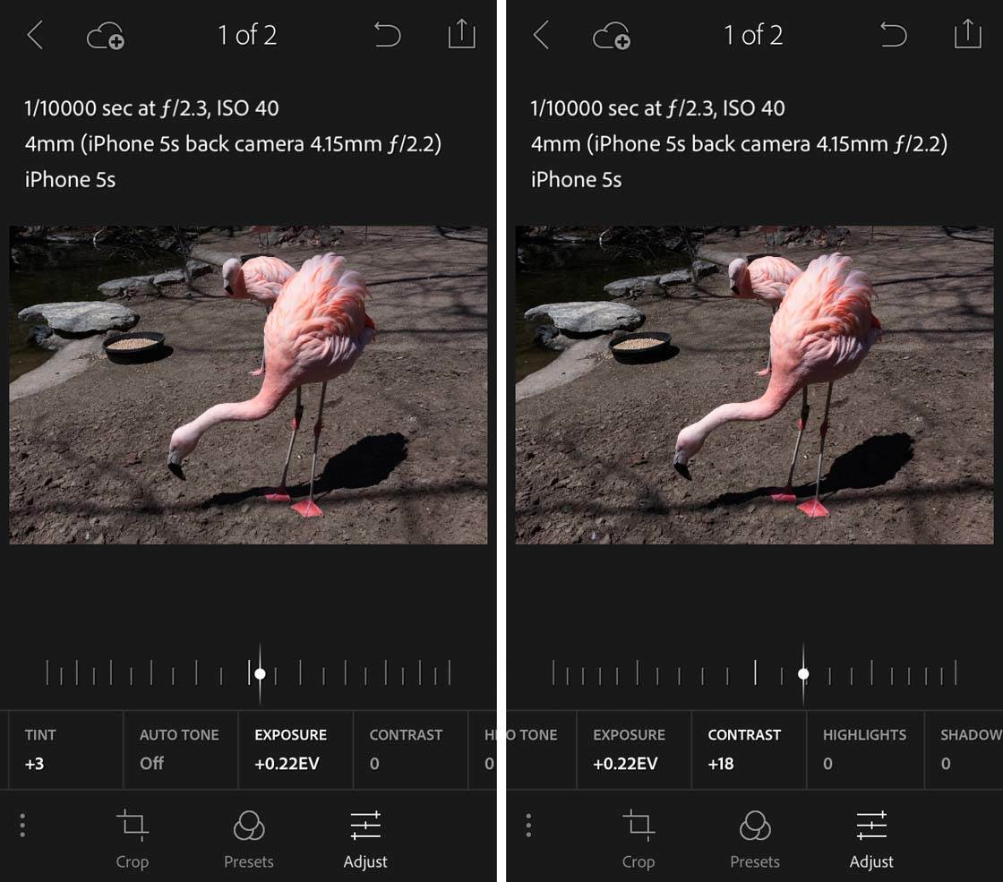 iPhone Lightroom App 3 no script