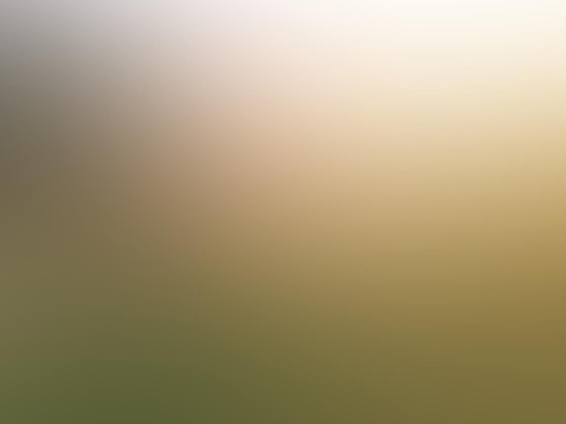 Lens Distortions App iPhone 6