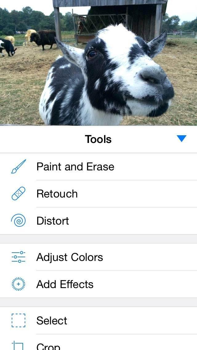 Pixelmator iPhone Editing App 9 no script