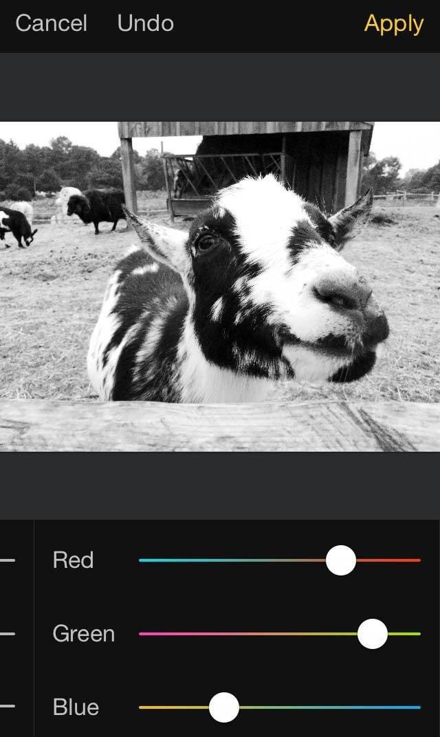 Pixelmator iPhone Editing App 13 no script