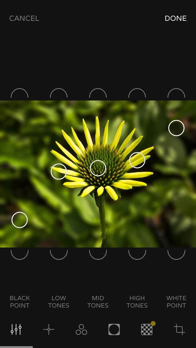 Ultralight iPhone Photo Editing App 9 no script
