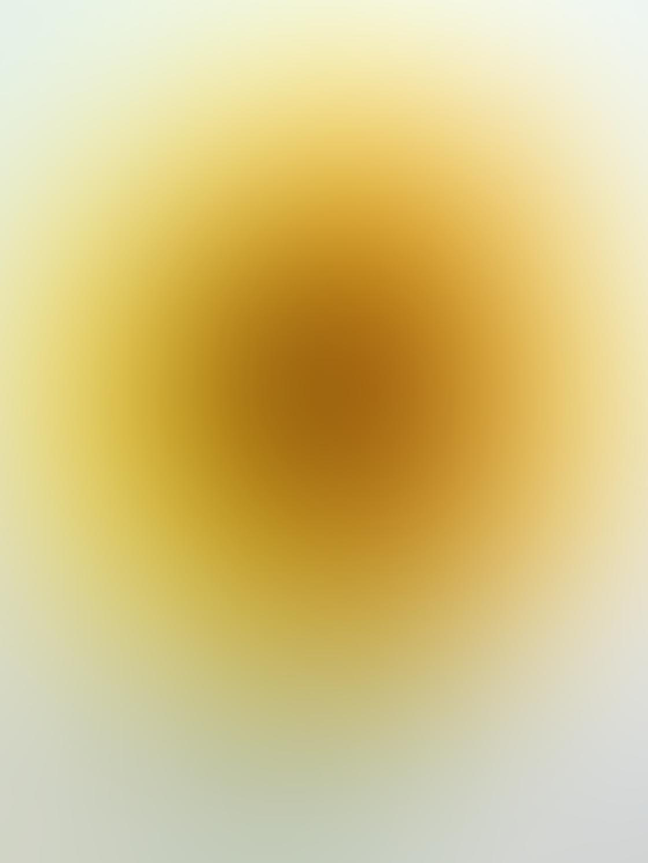 Flower iPhone Photo Editing 6