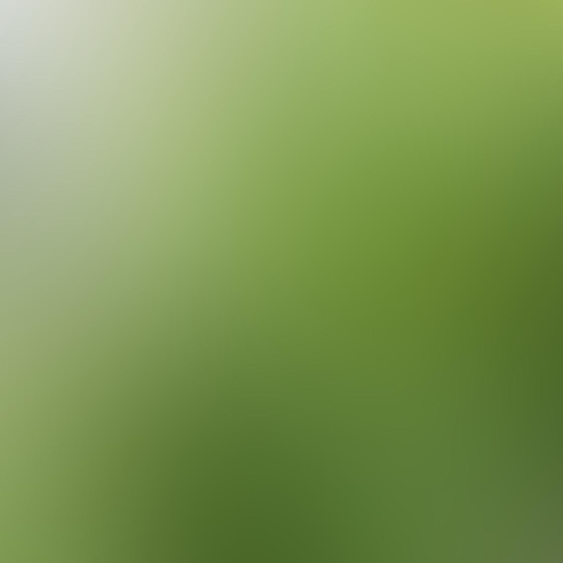 Common iPhone Photo Mistakes 26