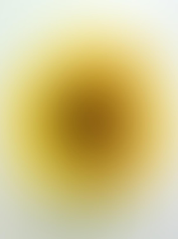 Flower iPhone Photo Editing 20
