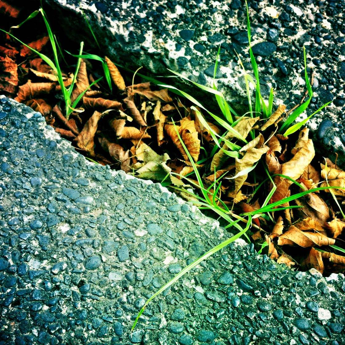 iPhone Photos Texture 11 no script