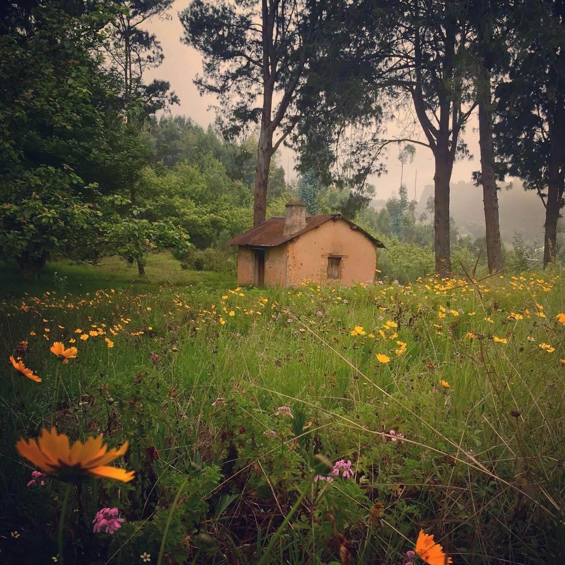 Landscapes iPhone Photos 21 no script