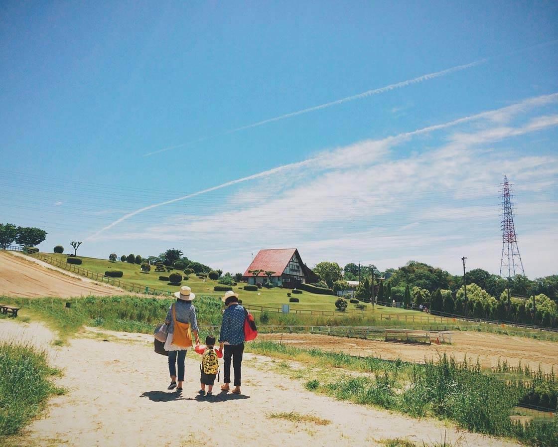 Landscapes iPhone Photos 30 no script