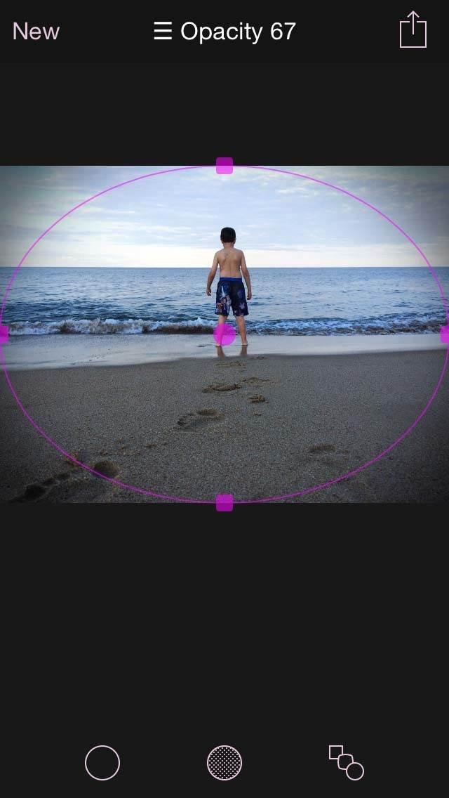 Final Touch Vignette App iPhone Photos 10 no script
