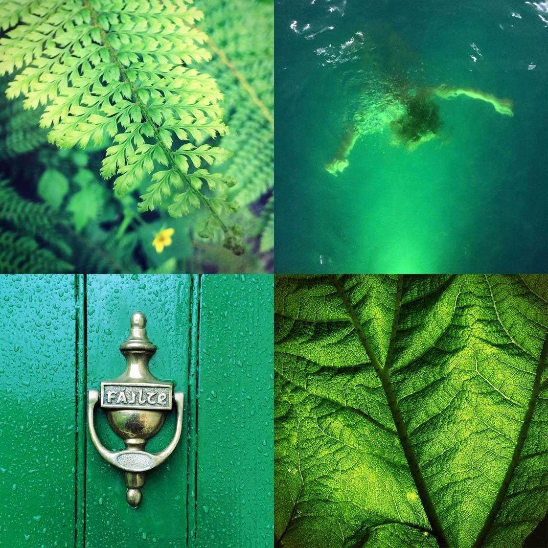 Green iPhone Photos Collage no script