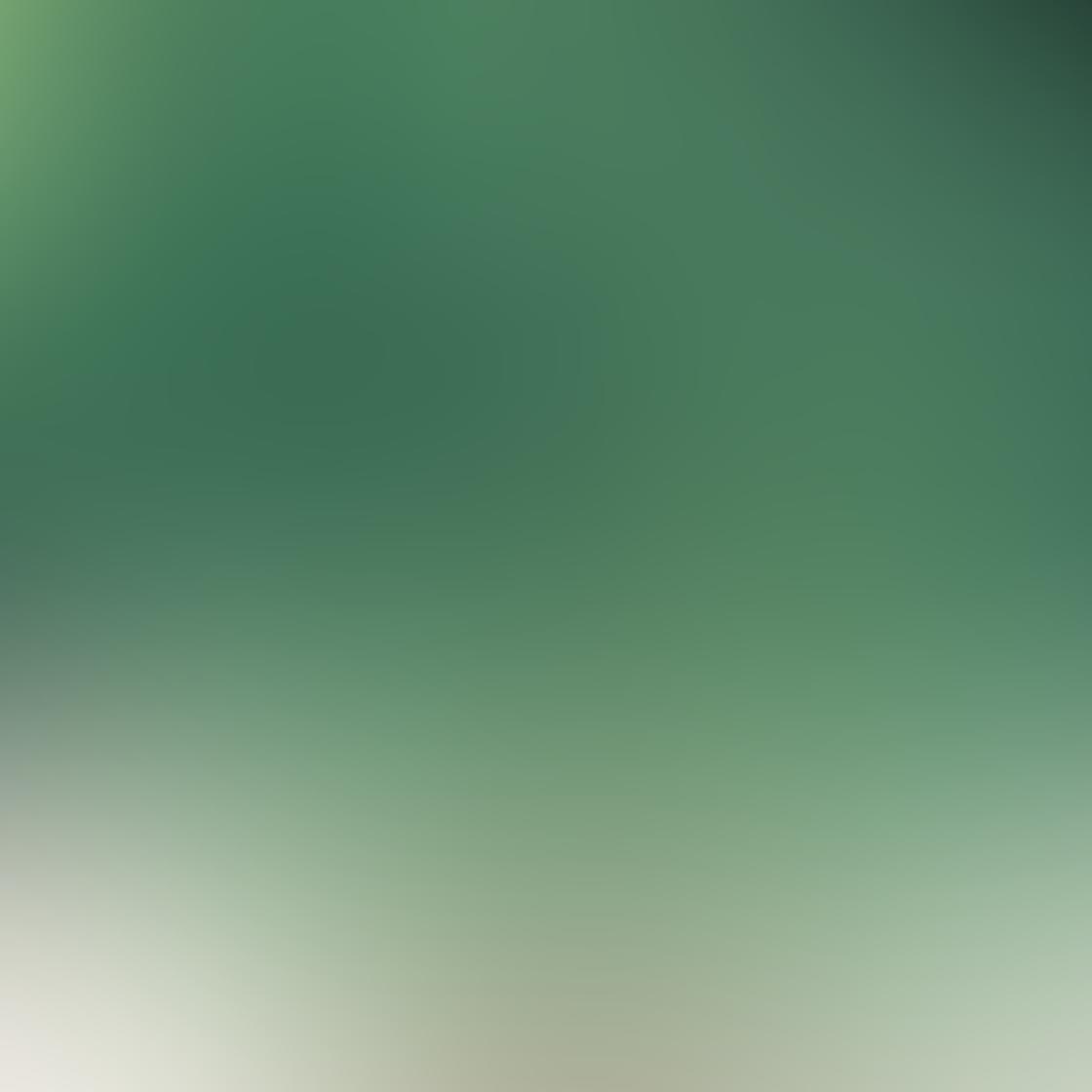 Green iPhone Photos 2