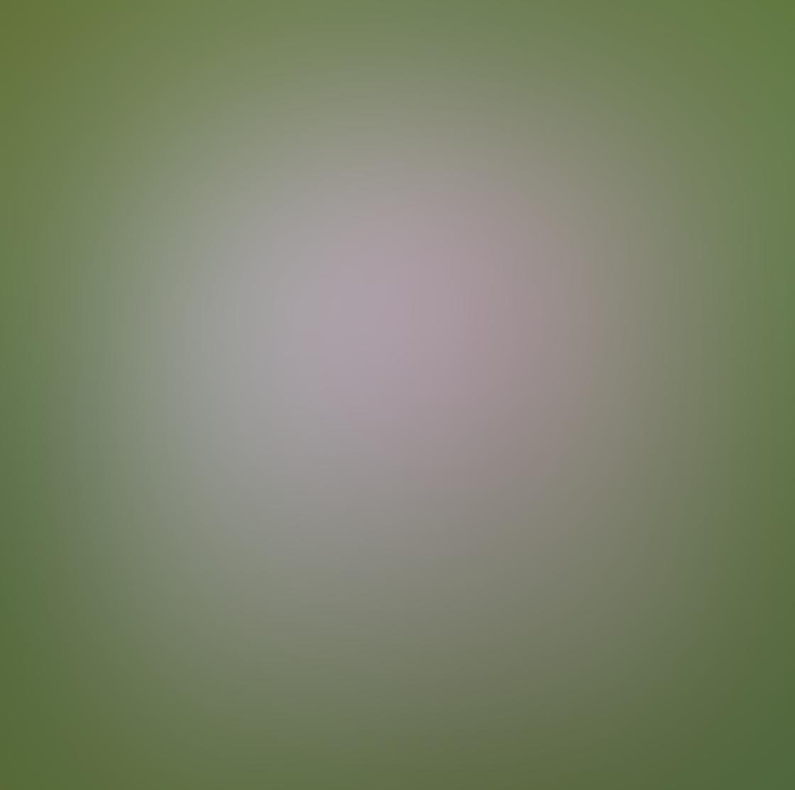 iPhone Ollocase Olloclip Active Lens 28