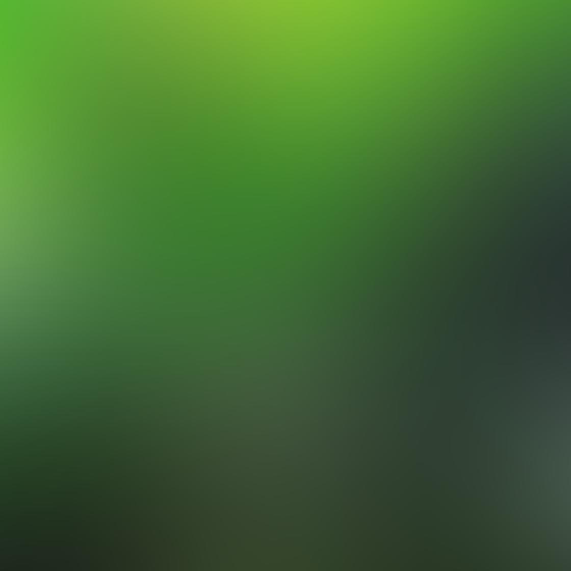 Green iPhone Photos 5