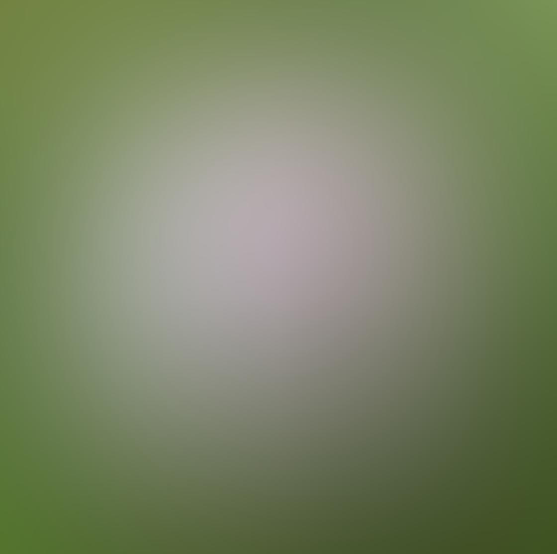 iPhone Ollocase Olloclip Active Lens 29