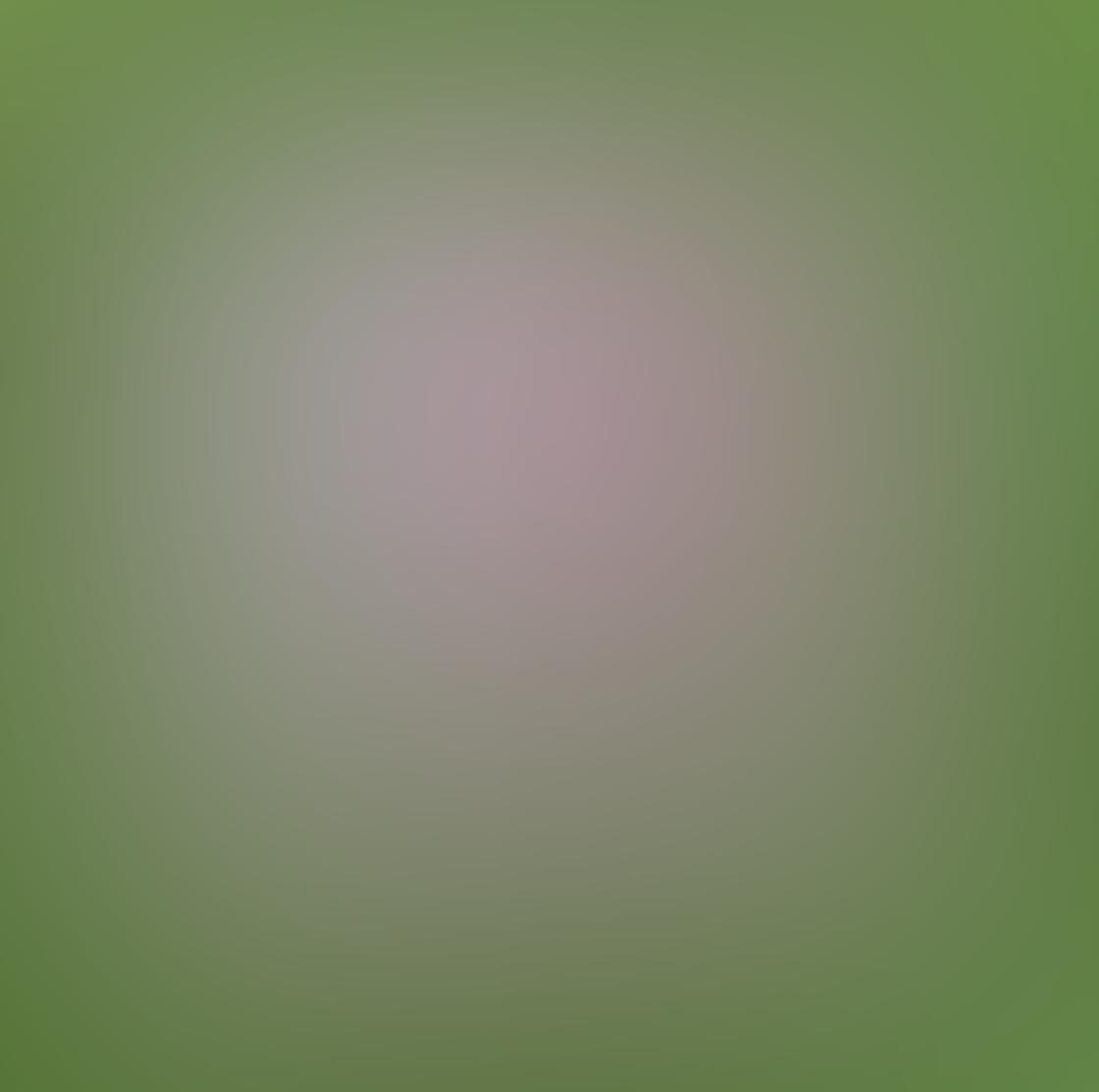iPhone Ollocase Olloclip Active Lens 27