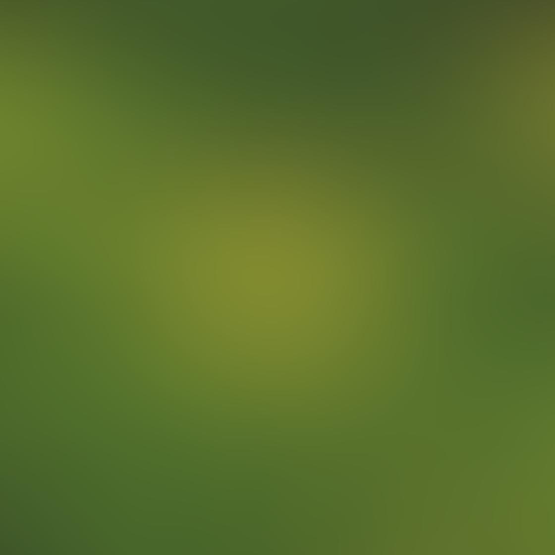 Green iPhone Photos 7
