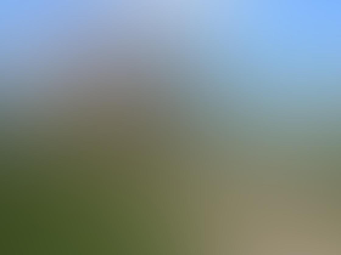 iPhone Ollocase Olloclip Active Lens 15