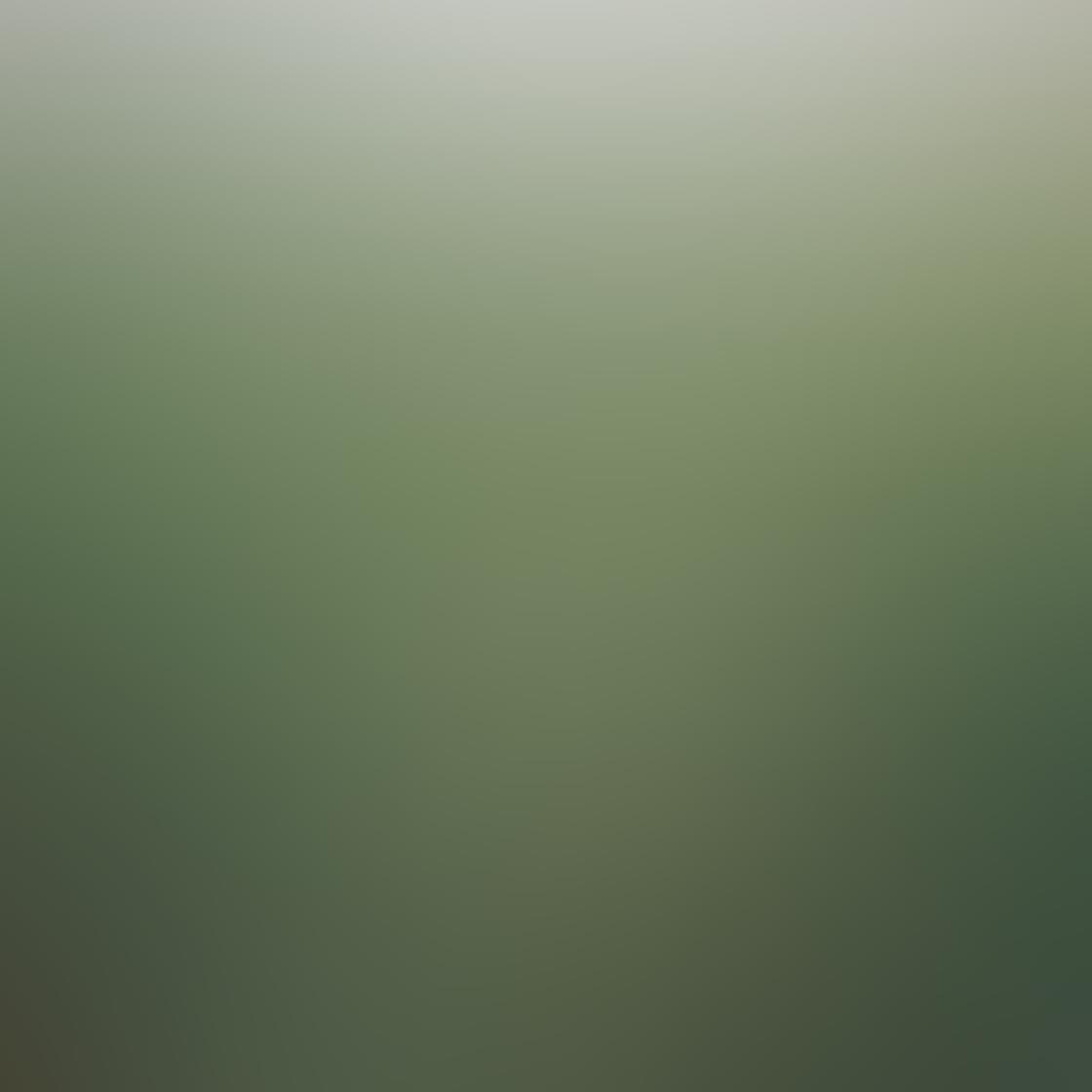 Green iPhone Photos 9