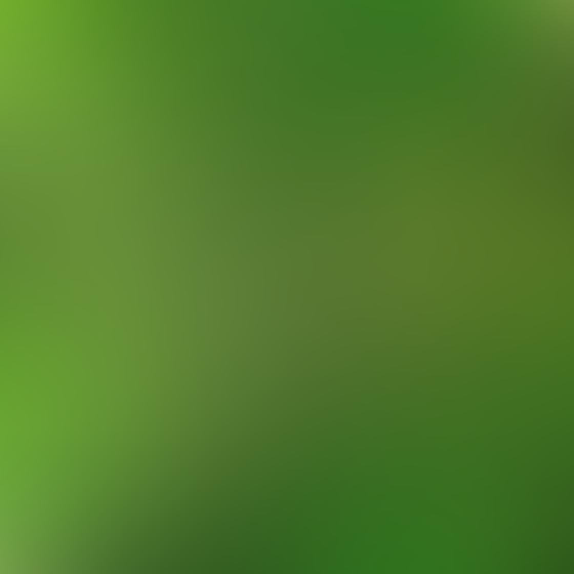 Green iPhone Photos 14