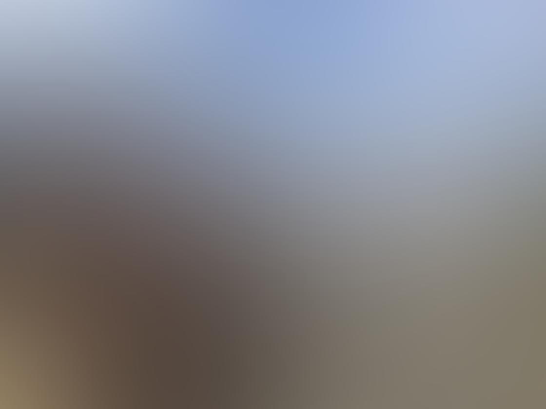 iPhone Ollocase Olloclip Active Lens 12