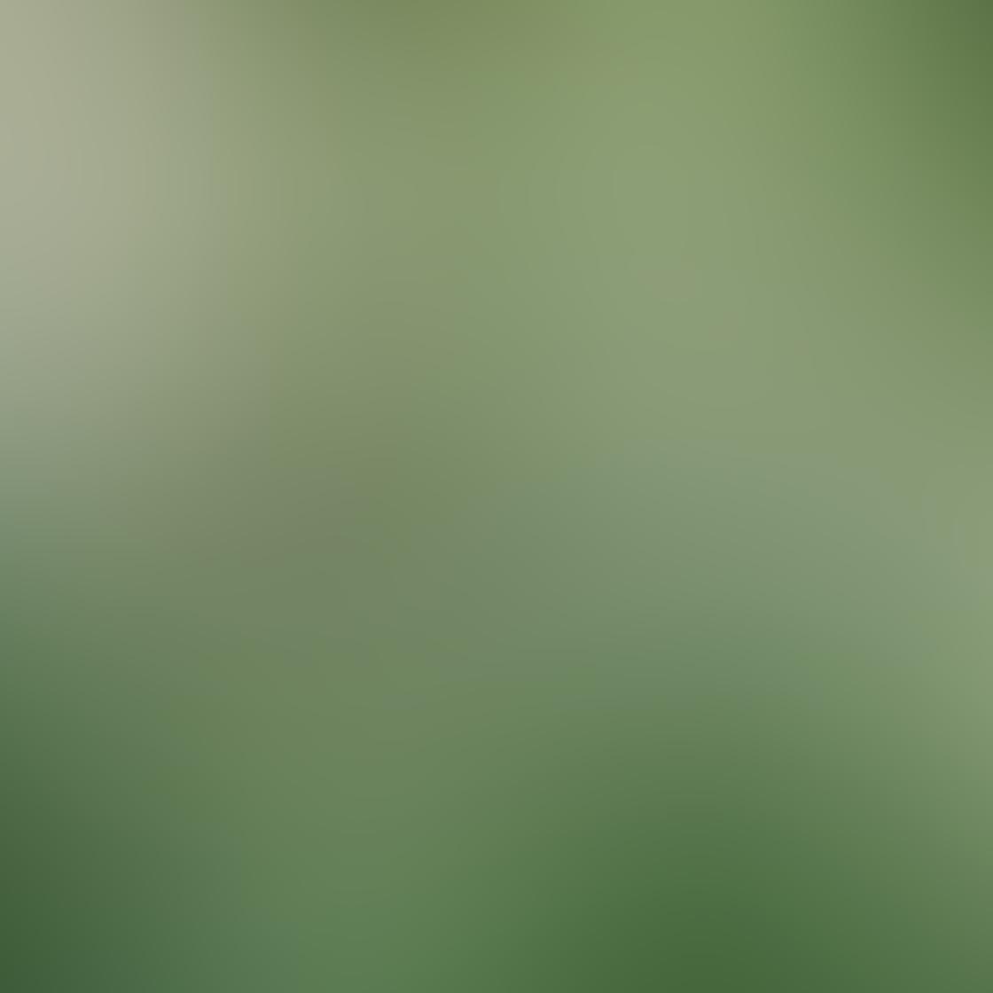 Green iPhone Photos 25
