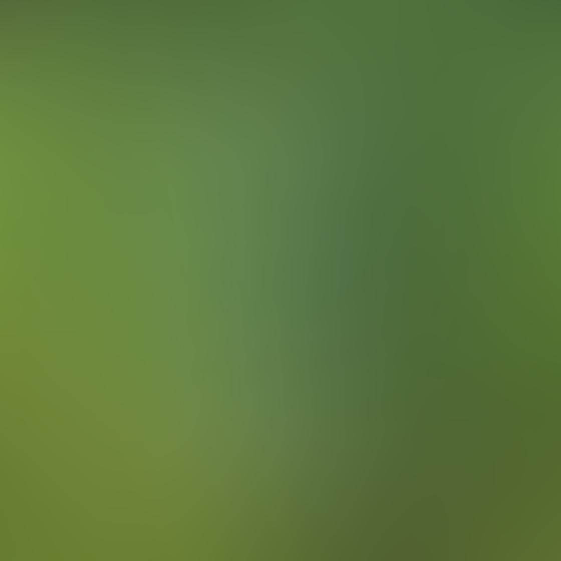 Green iPhone Photos 28