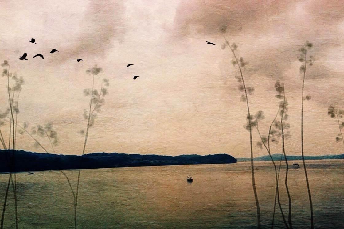 Painterly iPhone Landscape Photo 1 no script