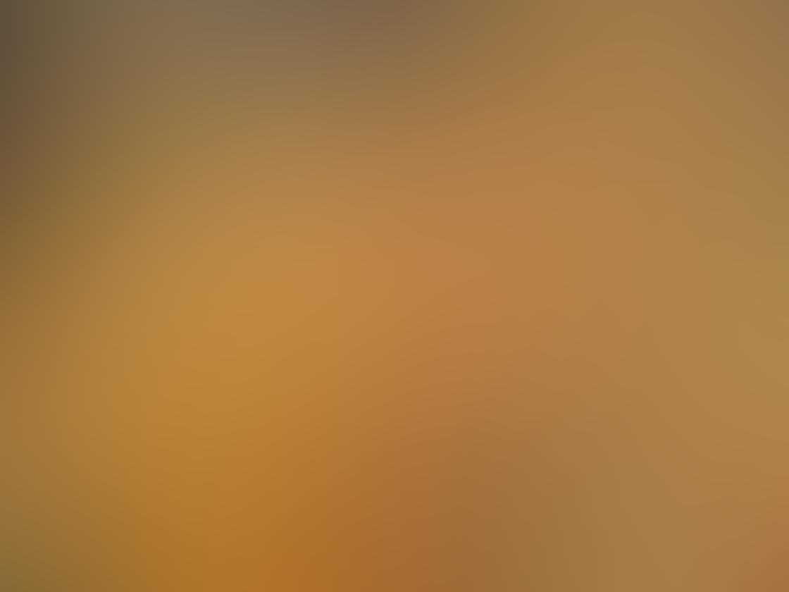 Jeremy Searle iPhone Photos 5