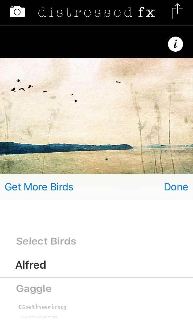 Painterly iPhone Landscape Photo 51 no script