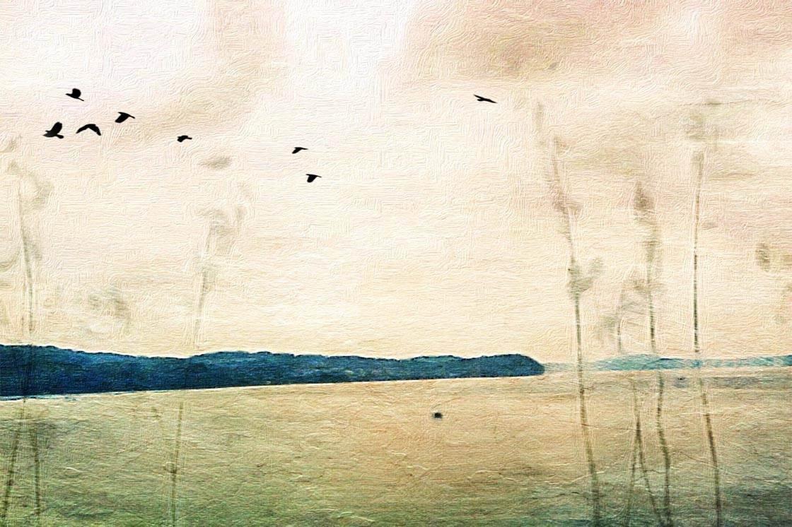 Painterly iPhone Landscape Photo 58 no script