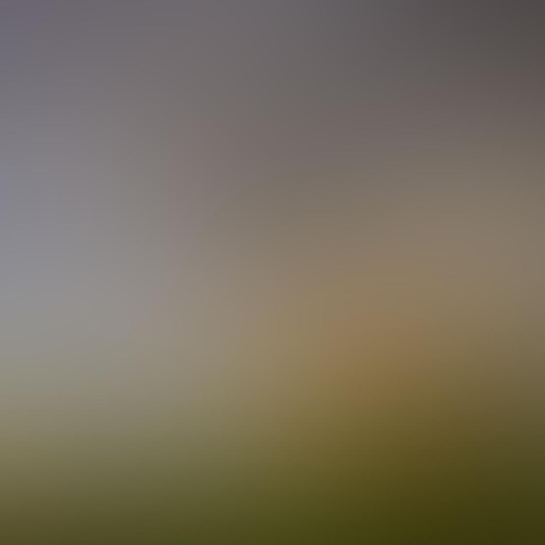 Jeremy Searle iPhone Photos 3