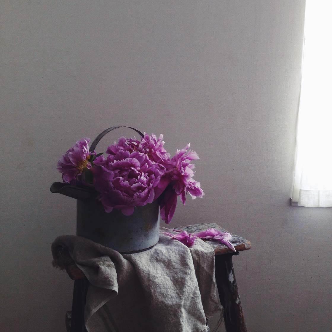 Yukiko Masuda iPhone Photos 27 no script