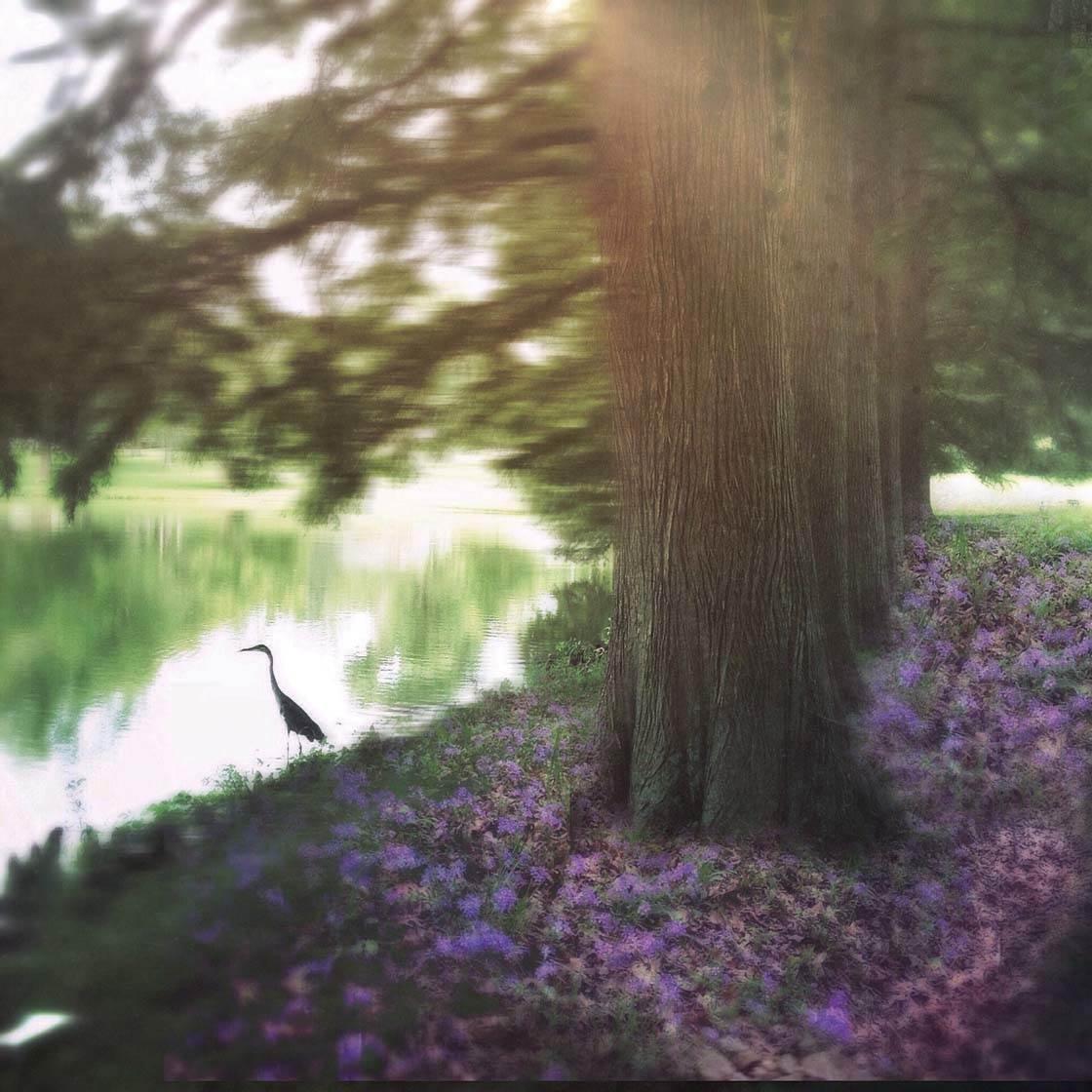 Veronica Hassel iPhone Photos 17 no script