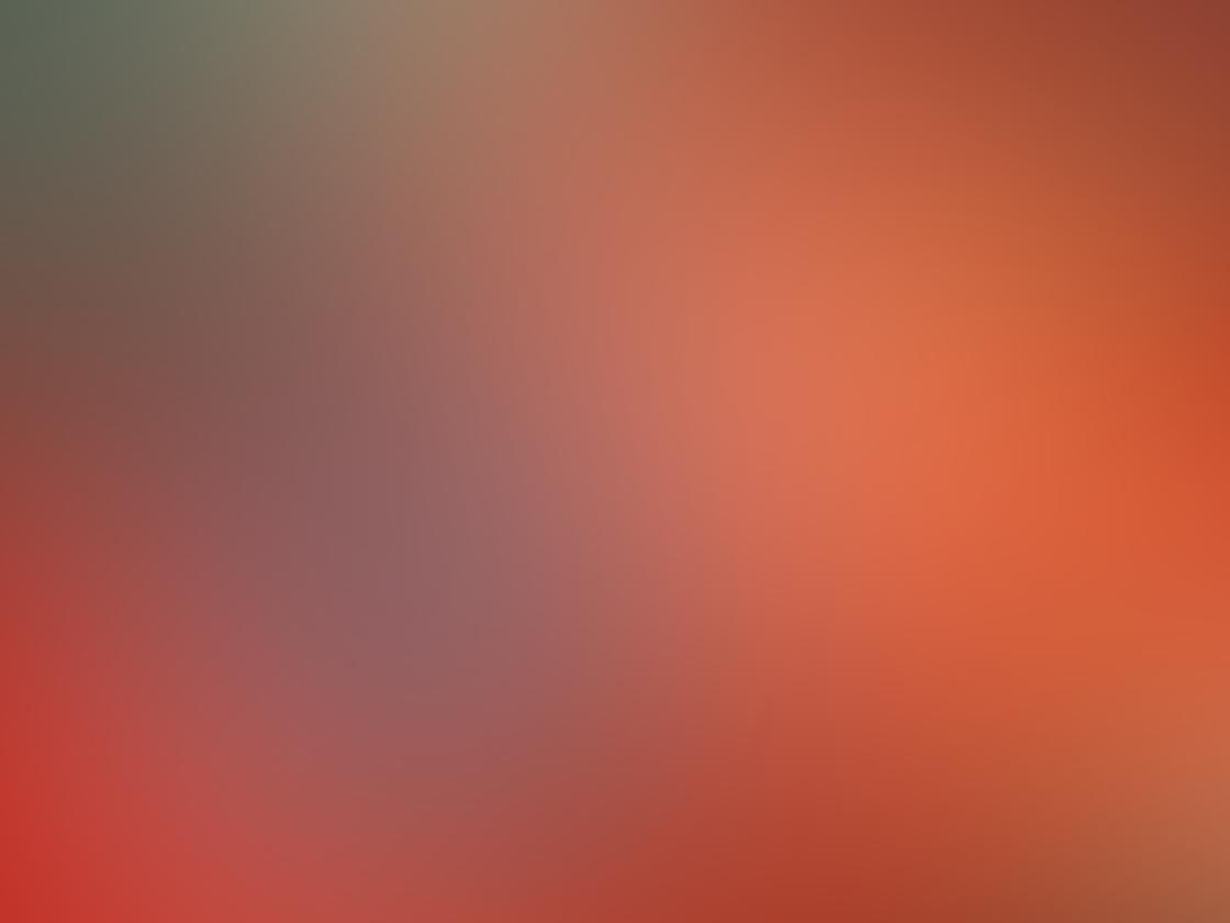 Olloclip Macro Pro Lens iPhone 12