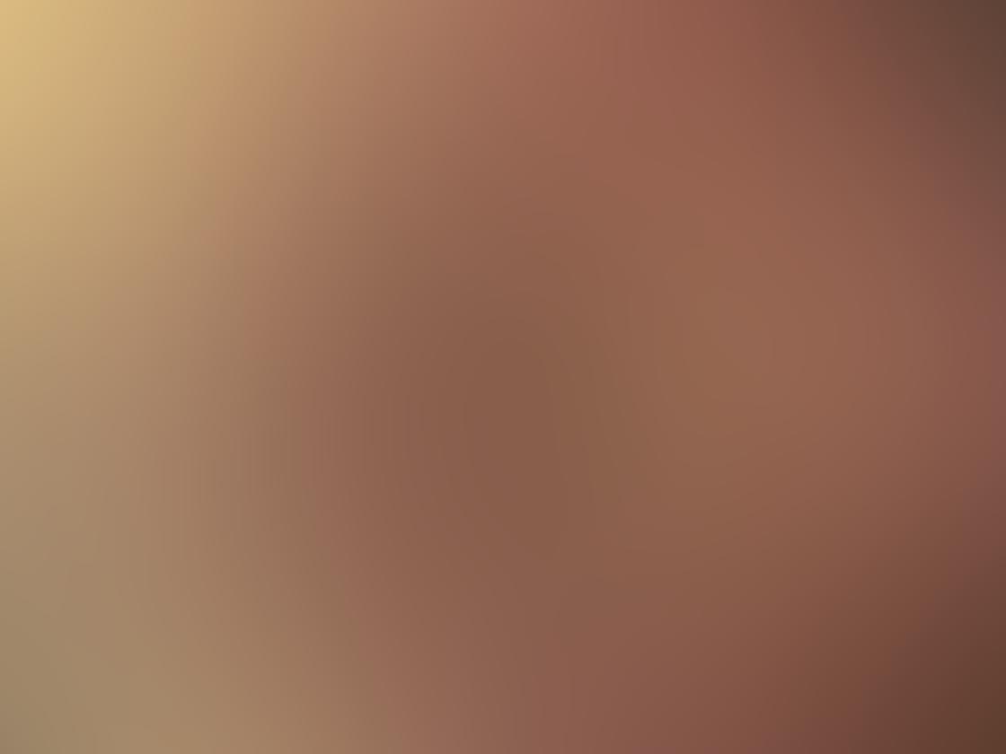 Olloclip Macro Pro Lens iPhone 4