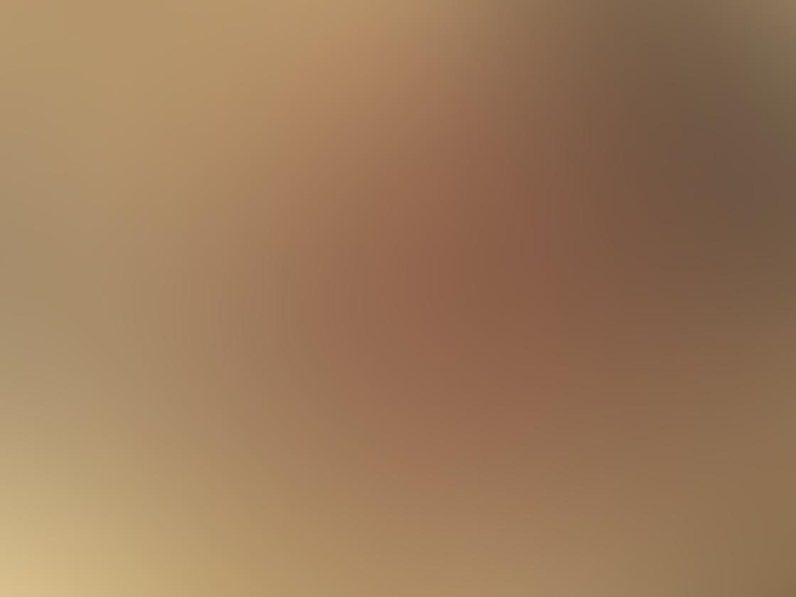 Olloclip Macro Pro Lens iPhone 3