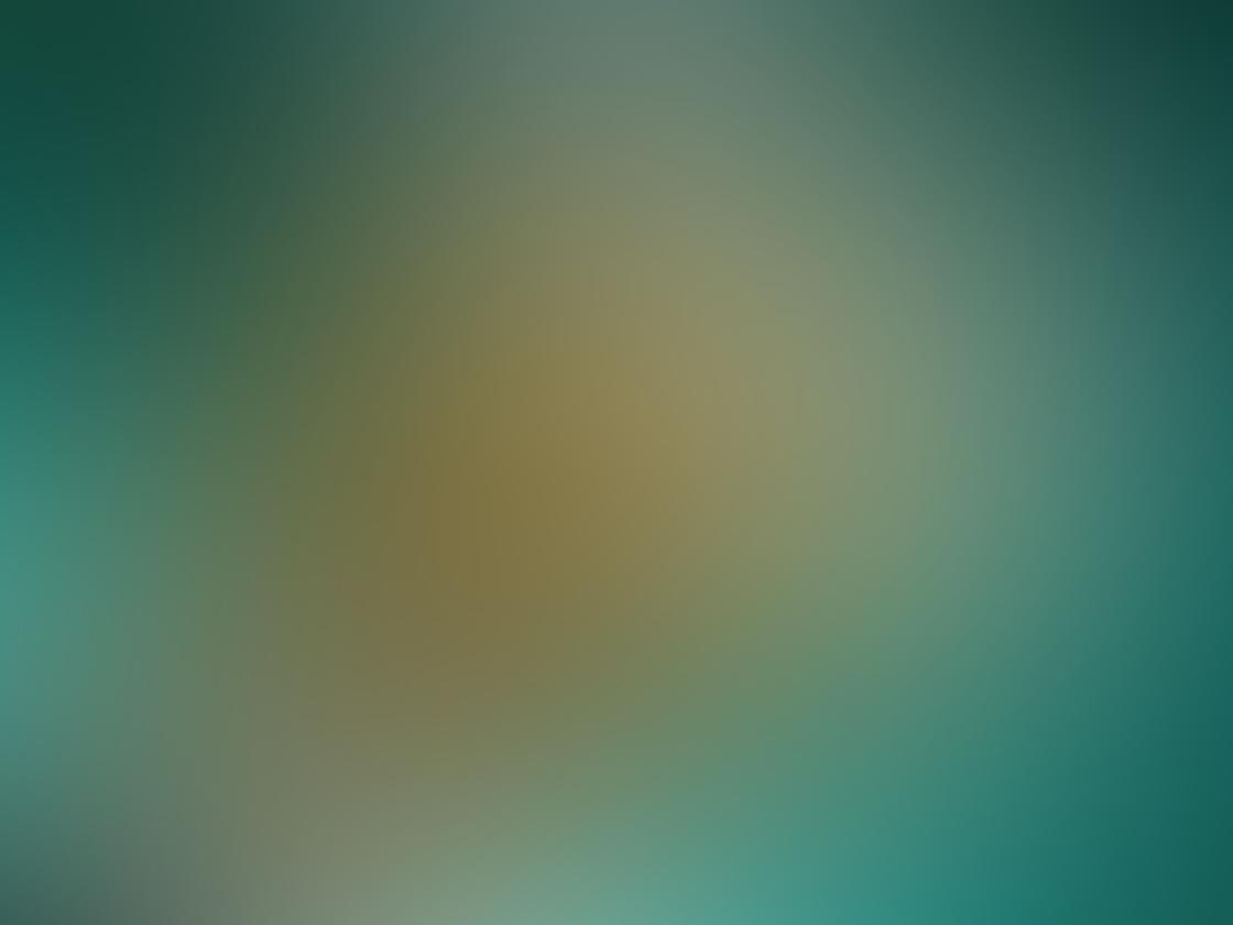 iPhone Photo Perspective 19