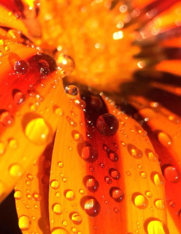 iPhone Photos Beautiful Light 26 no script