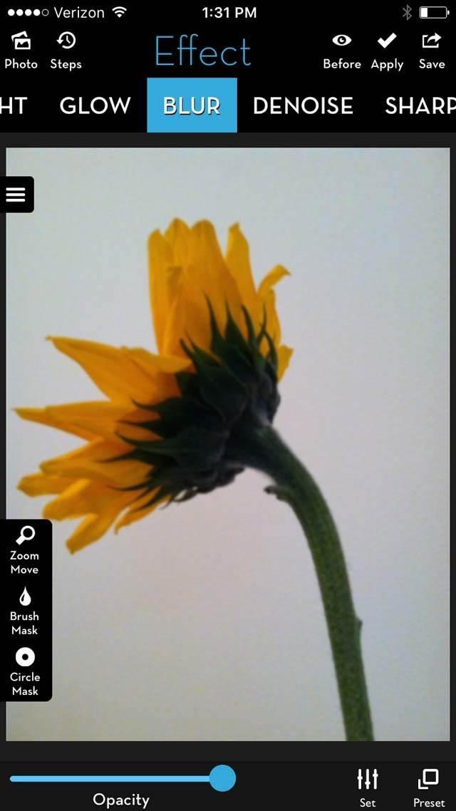 Floral Blur iPhone Photos 15 no script