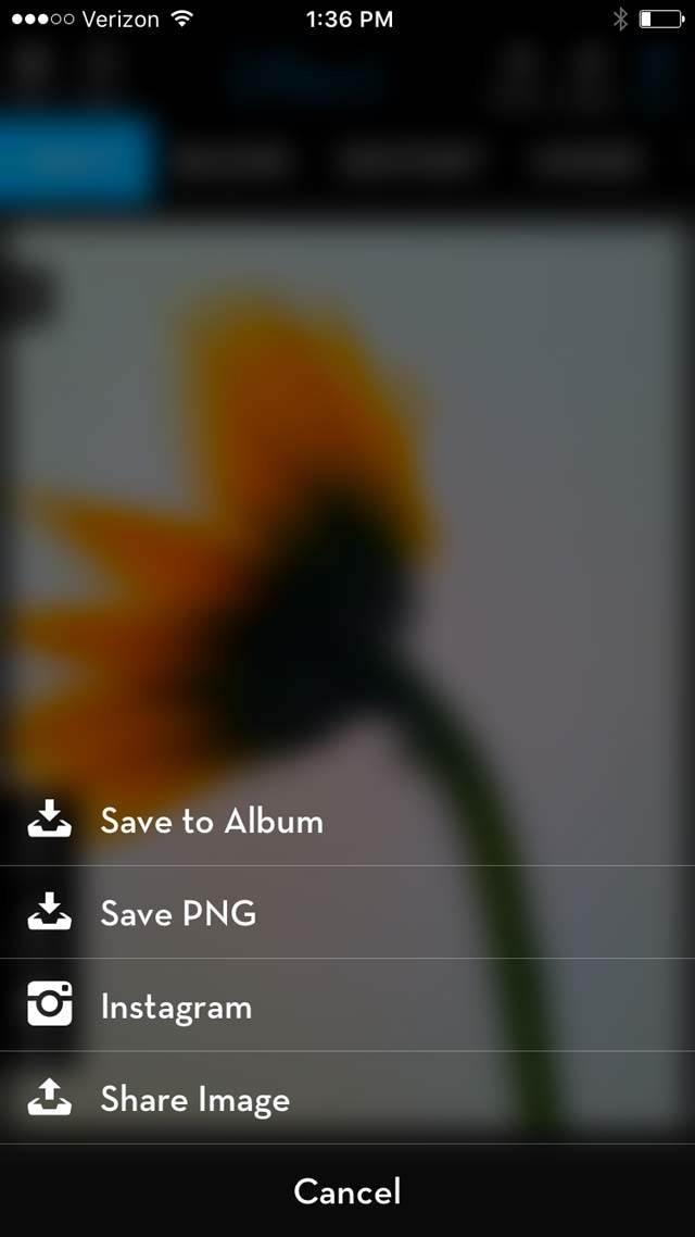 Floral Blur iPhone Photos 21 no script