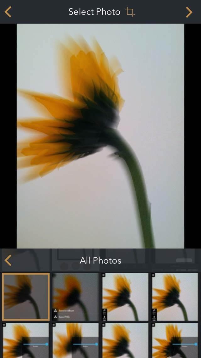 Floral Blur iPhone Photos 23 no script