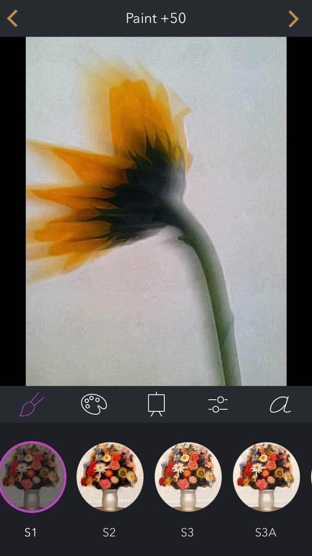 Floral Blur iPhone Photos 24 no script