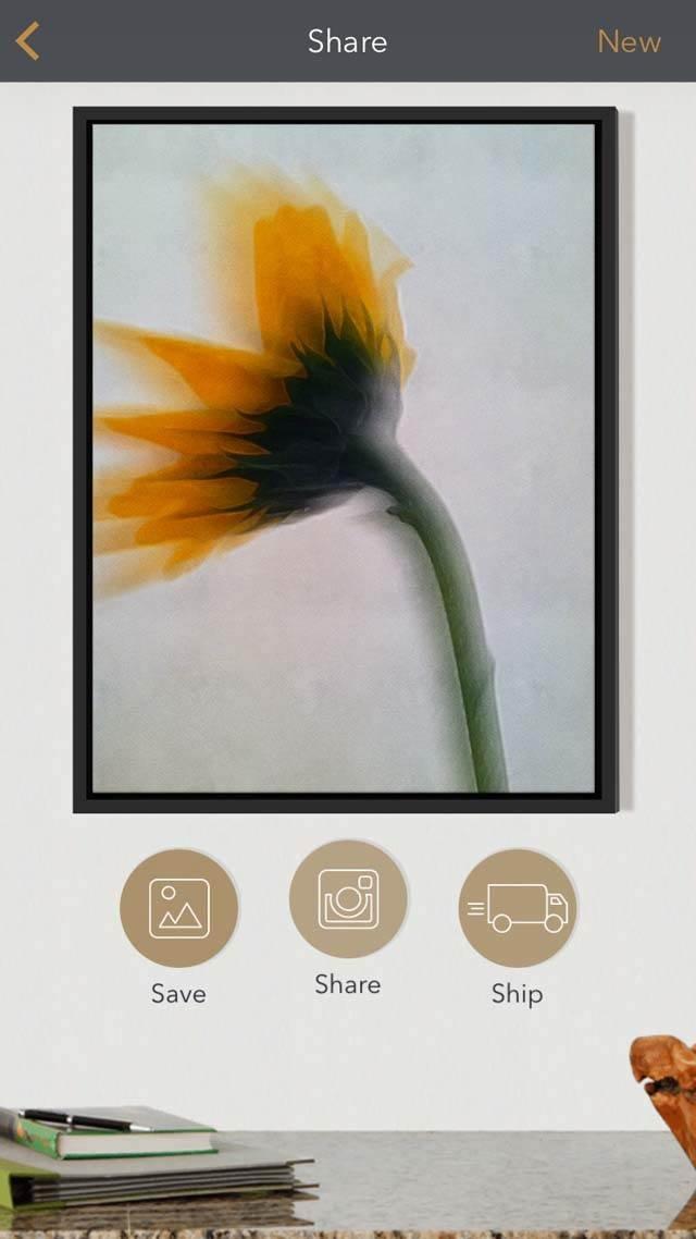 Floral Blur iPhone Photos 26 no script