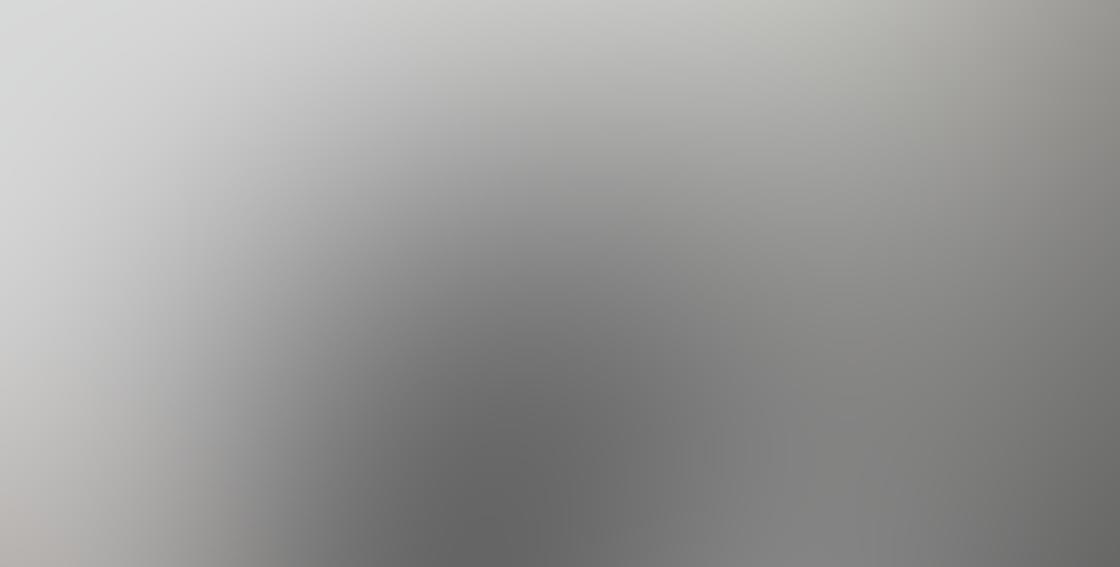 Ztylus Z-Prime iPhone Lens 10