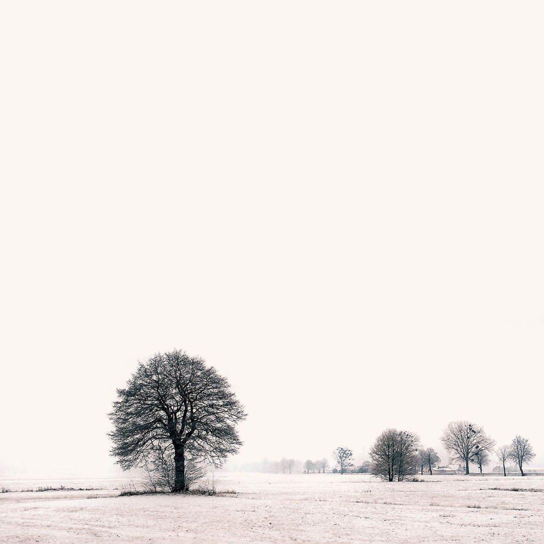 iPhone Landscape Photos 2016 22 no script