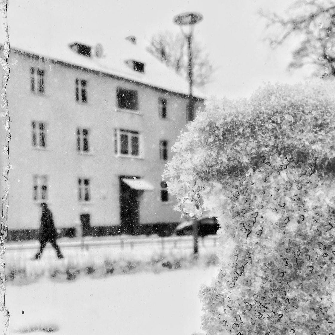 Winter iPhone Photos 2016 1