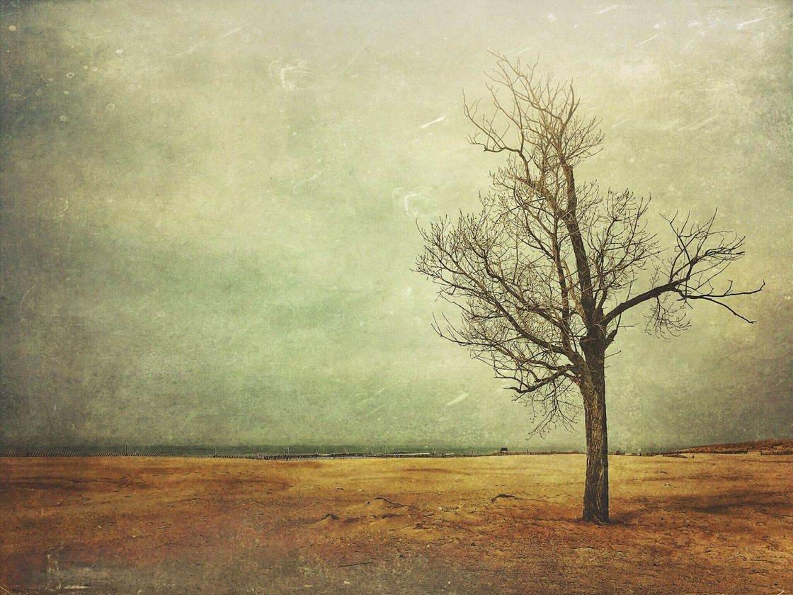 iPhone Landscape Photos 2016 31 no script