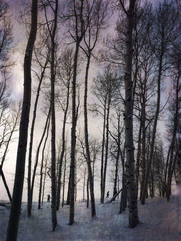 Winter iPhone Photos 2016 12 no script