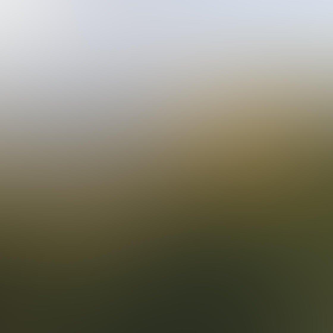 Landscape iPhone Photo Composition 13