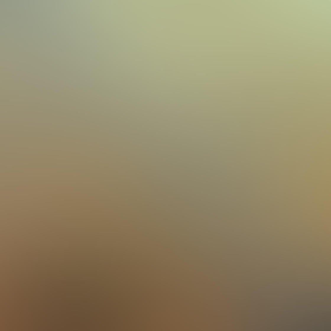 Fog & Mist iPhone Photos 47
