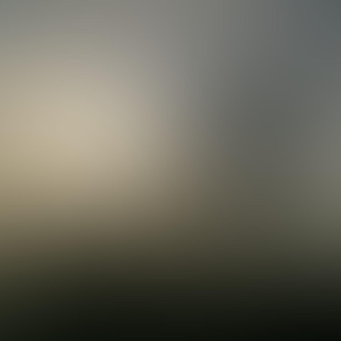 Fog & Mist iPhone Photos 14
